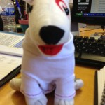 Meet the toy dog, wearing the prototype of the final t-shirt.